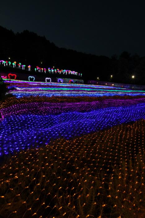 허브아일랜드 불빛동화축제 - 라이팅&일루미네이션  사진7