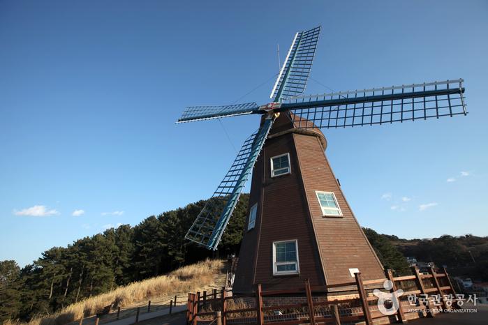바람의 언덕의 상징, 11m 높이 풍차