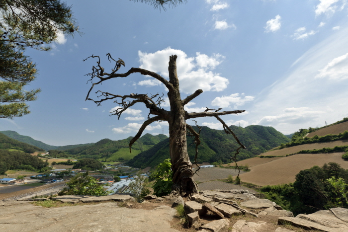Molundae Cliff (Jeongseon) (몰운대-정선)