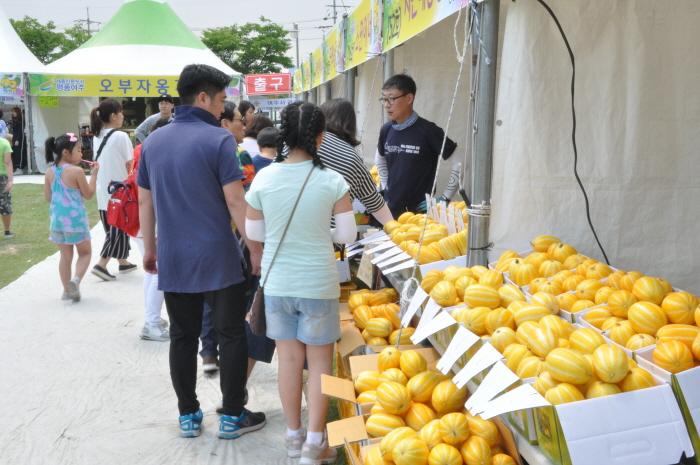 Yeoju Geumsa Korean Melon Festival (여주 금사참외축제)