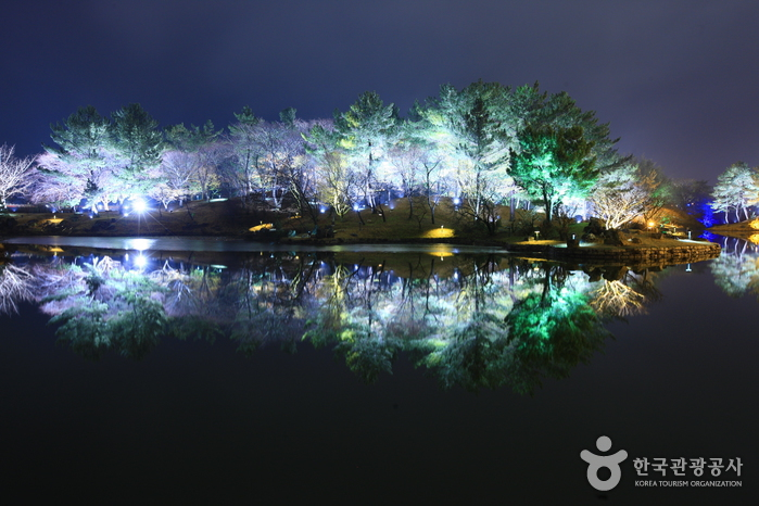 Anapji Pond (  , )