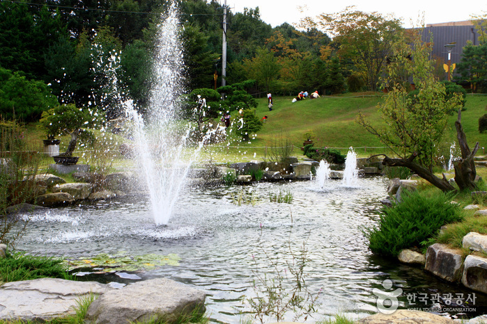枫树园,结果树园,夕阳园,中部地区野生园区,盆景园,乡土艺术树木园