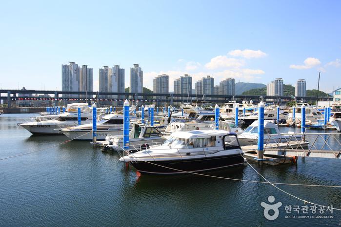 Suyeong Bay Yachting Center (수영만 요트경기장)