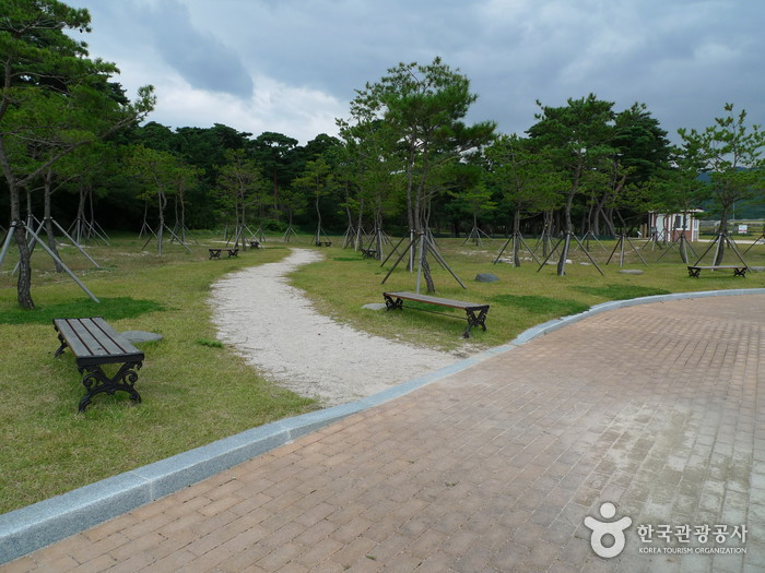 Gyeongju Gwaereung Tomb (경주 원성왕릉)