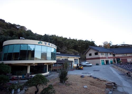 Gwangyang Cheong Maesil Farm (광양 청매실농원)