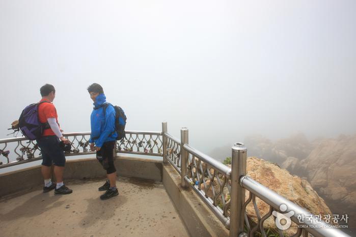 Парк Тэванам (대왕암공원)23