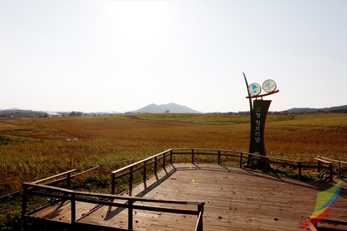 Borinara Hagwon Farm ( )
