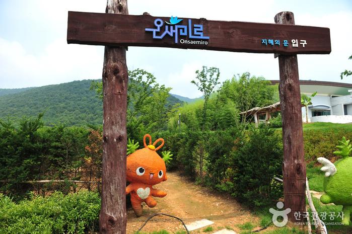 Ganghwa Armiae World (강화 아르미애월드)