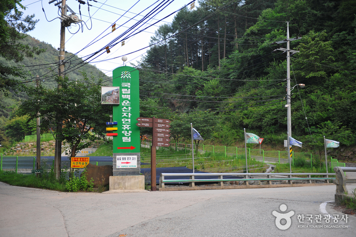 Wonju Baegunsan National Recreational Forest (국립 백운산자연휴양림 (원주))