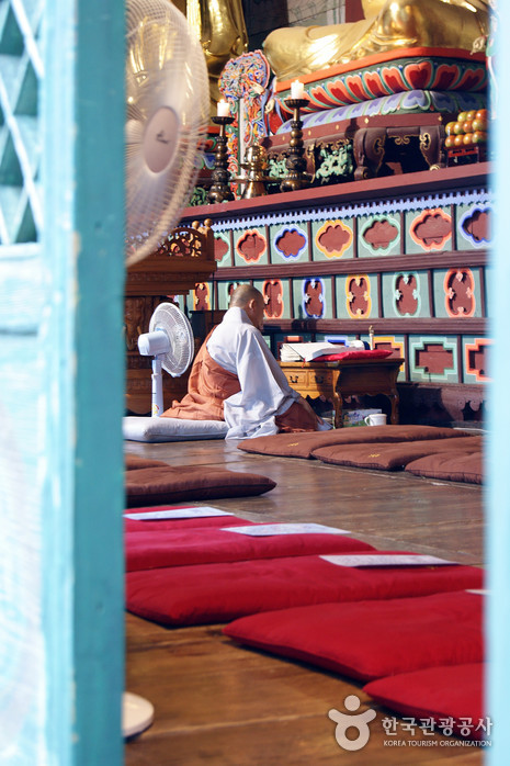 Seonunsa Temple Stay (선운사 산사체험)