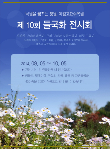 Wild Chrysanthemum Exhibition of The Garden of Morning Calm (아침고요수목원 자생 들국화 전시회)