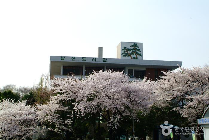 南山图书馆<br>(남산도서관)