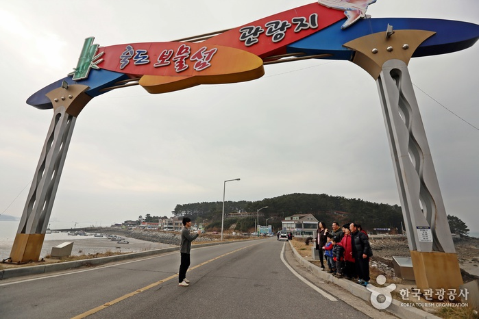Boryeong Beach Special Tourist Zone(보령 해수욕장 관광특구)