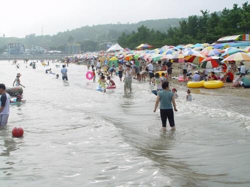 Strand Yulpo (율포해수욕장(솔밭해변))