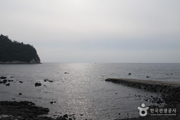 [제주올레 6코스] 쇠소깍-서귀포 올레