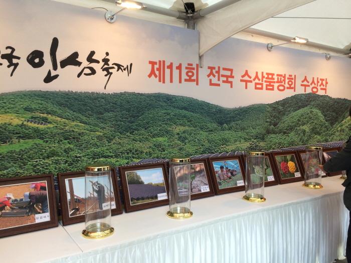 대한민국 인삼 대축제 2017