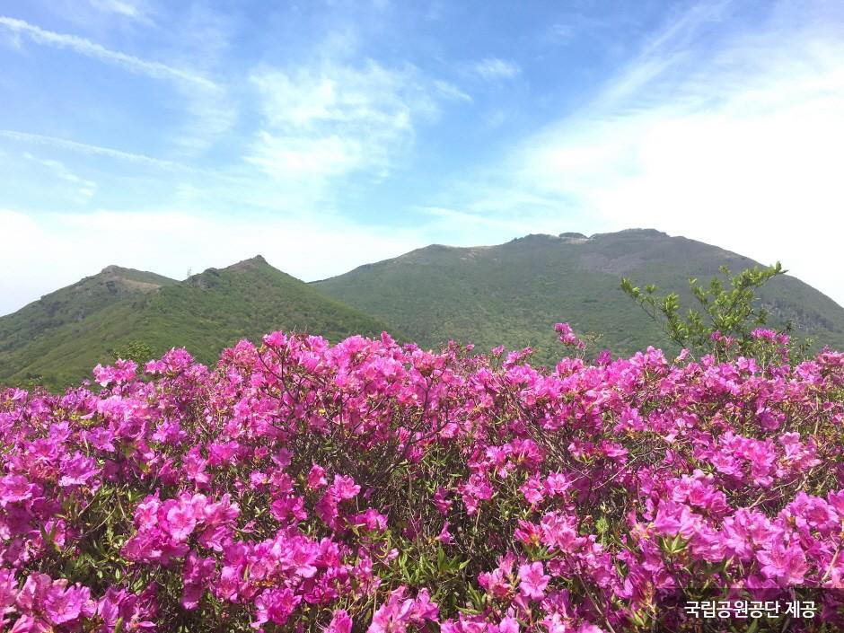 Mudeungsan National Park (무등산국립공원)