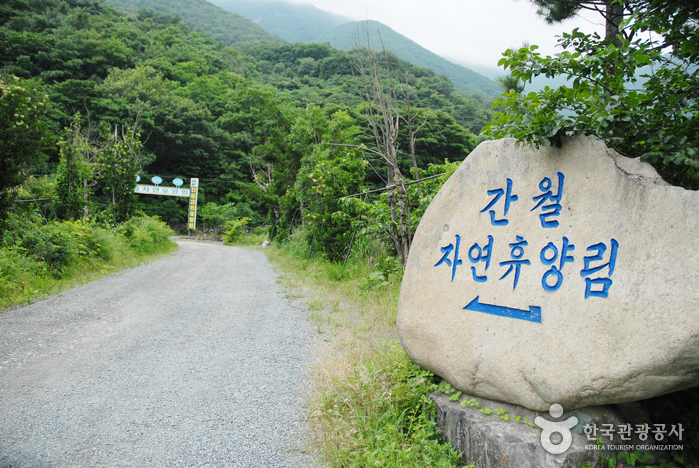 Ganwol Recreational Forest (간월자연휴양림)