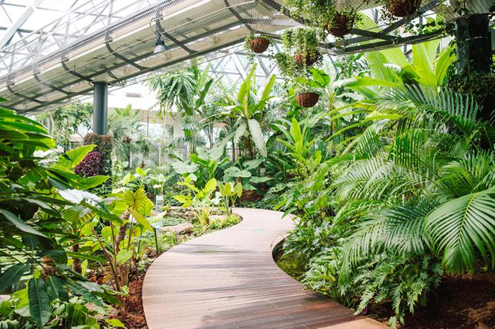ソウル植物園の温室(提供:ソウル植物園)