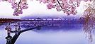 Festivales de primavera (de marzo a mayo)