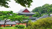 Exploration des palais à Séoul