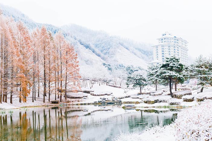 Elysian Gangchon Resort (Credit: Elysian Gangchon)