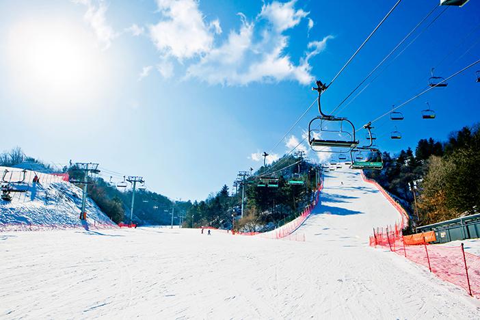 エリシアン江村スキー場の風景(提供: エリシアン江村(全体))