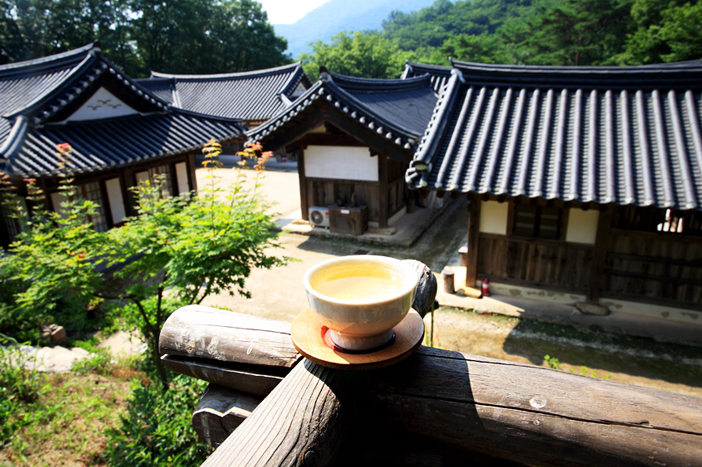 Tea ceremony experience at Suncheon Wild Tea House