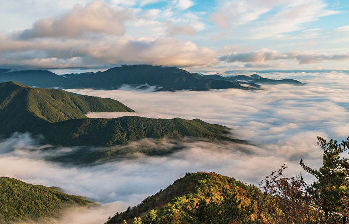 A sea of clouds gathers below Mt. Sinbulsan in the early morning