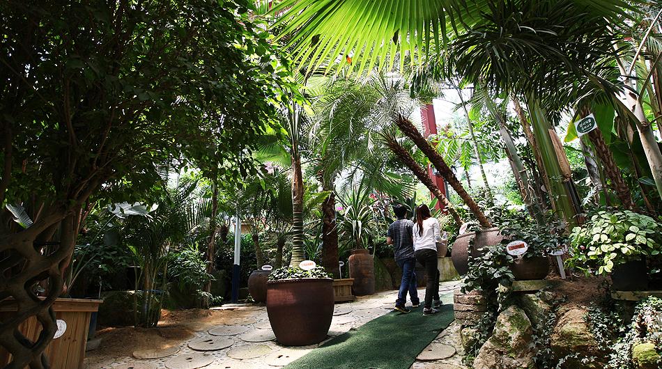 허브 식물 박물관 내부 전경