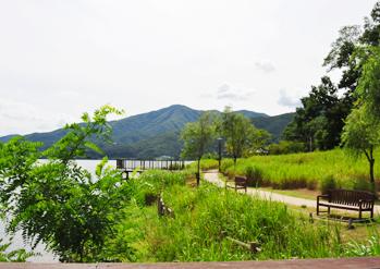 茶山生态公园