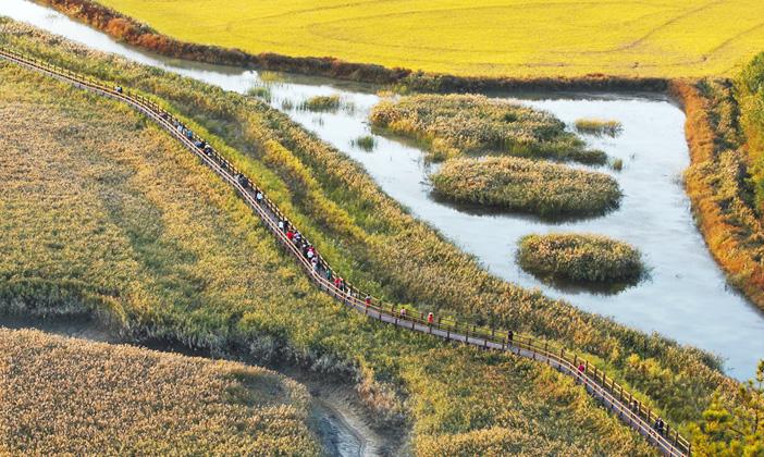 Пейзажи залива Сунчхон