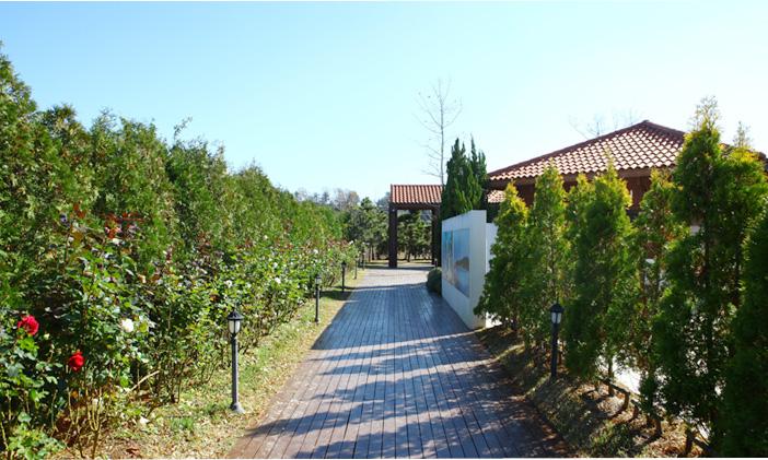 Jardin de Turquie (en haut) / Jardin d'Allemagne et jardin de Chine (en bas)