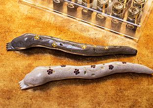긴 막대처럼 생긴 마사지 도구, 화사