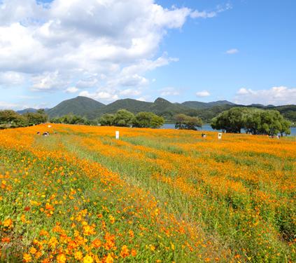 Jardín Acuático de Namyangju (cortesía del Ayuntamiento de Namyangju)