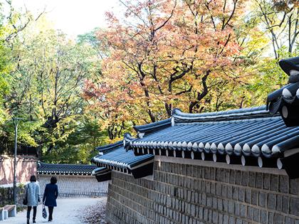 秋日漫步好去處─蜿蜒小巷&散步道