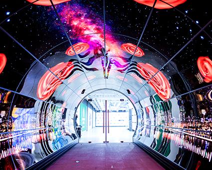 Светодиодный OLED тоннель (Источник: Сеульская башня Намсан)