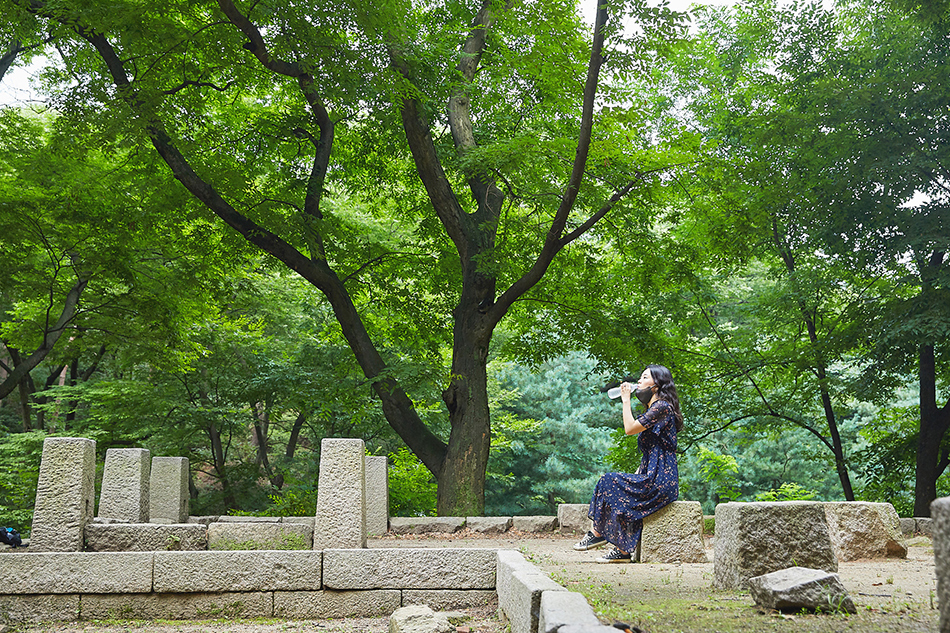 Baekseokdongcheon Garden Site