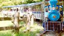 Осенние прогулки в Чхунчхоне!