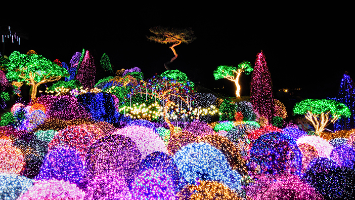 Lighting Festival at The Garden of Morning Calm (Credit (all): The Garden of Morning Calm)