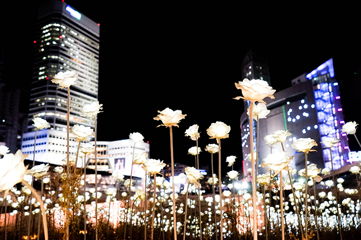 Led Rose Garden At Dongdaemun Design Plaza Ddp