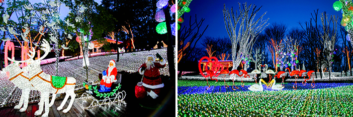 Light festival at Starlight Village Photo Land