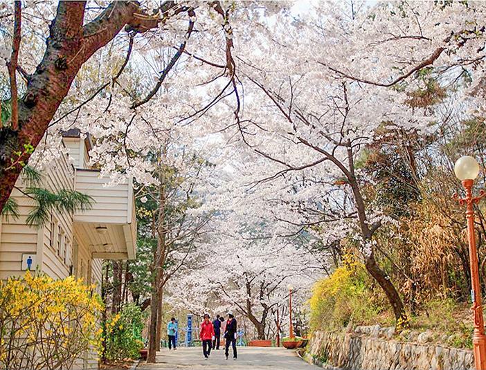 Parc Samcheong (aut: Ville de Séoul)