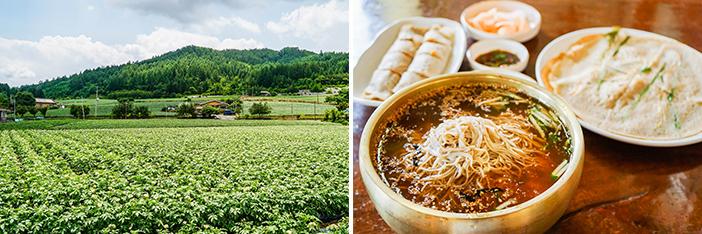 Village culturel Leehyoseok avec ses champs de fleurs de sarrasin (à gauche) / Plats cuisinés avec du sarrasin (à droite)