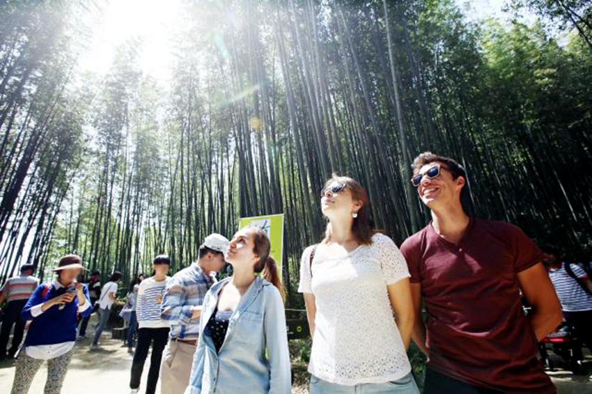 Festival del Bambú de Damyang (cortesía del comité organizador).