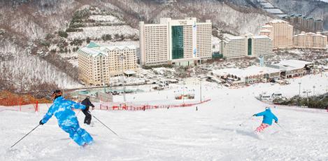 エキサイティングな韓国の冬を体験!<br />韓国のスキーリゾート大解剖!