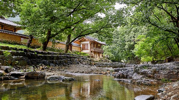 前往韓國溪谷和瀑布,感受大自然的寧靜與盡情放鬆休憩