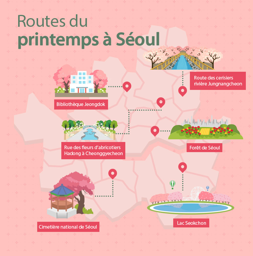 Plan illustré des routes des fleurs du printemps à Séoul