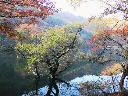 Cheongsong Juwagsan National Park: Four seasons getaways