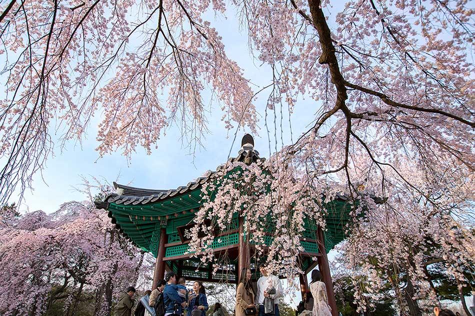 國立首爾顯忠院(圖片來源: 首爾市)